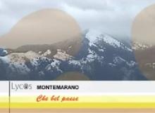 lycos montemarano