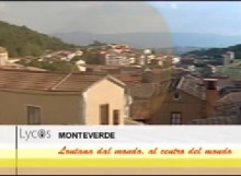 Monteverde Lycos
