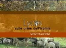 montefalcione2parte